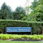 Salem Springs NC